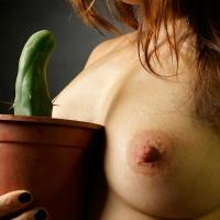 Penis Kaktus