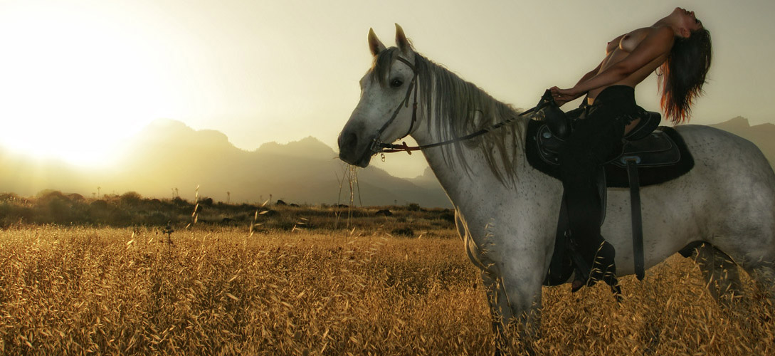 Photo sessions with horses